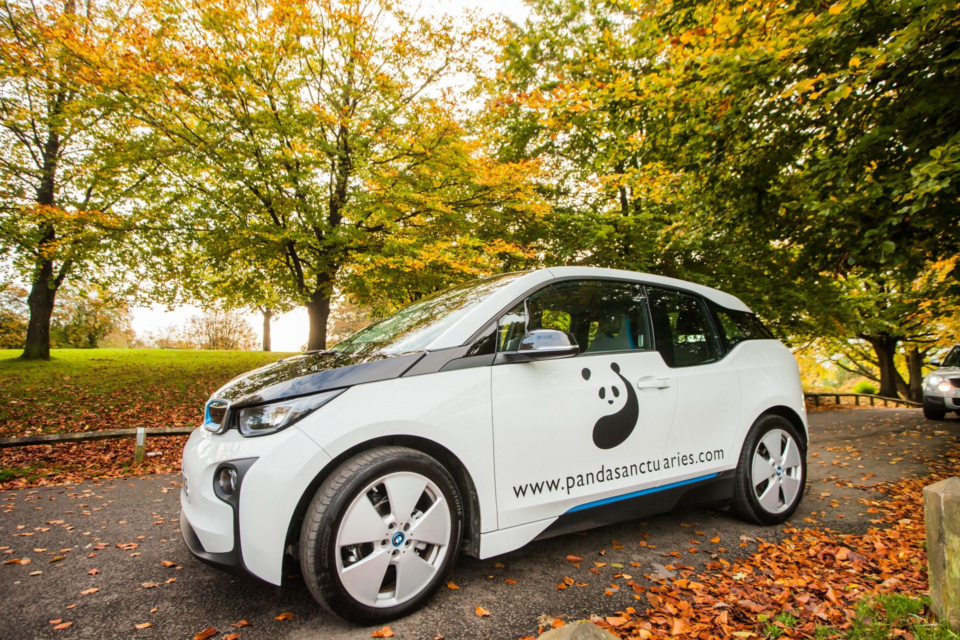 Our electric car has boosted our green credentials as an eco-friendly accommodation provider.